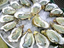 365 things to do in Boston oysters